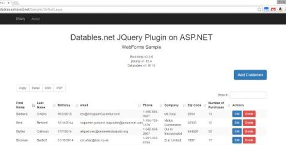 Webview Vb Net