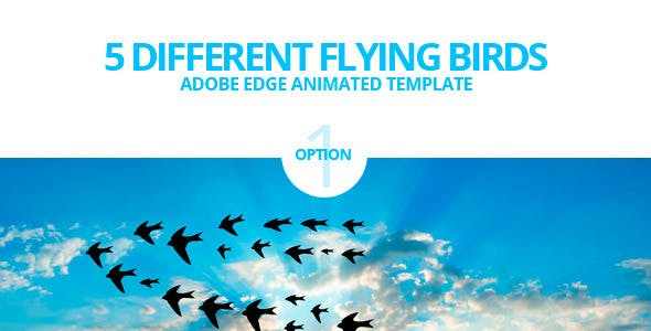 edge animate flying birds template by touringxx codecanyon